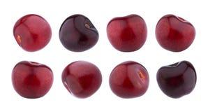 Ciliegia isolata Raccolta delle ciliege isolate su fondo bianco Immagine Stock