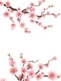 Ciliegia o struttura floreale di sakura ENV 10 royalty illustrazione gratis