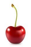 Ciliegia rossa dolce illustrazione vettoriale