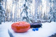 Cilindro de aço da língua na floresta do inverno fotos de stock
