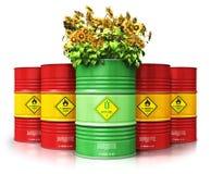Cilindro verde do combustível biológico com os girassóis na frente dos vagabundos vermelhos do óleo ou do gás Imagem de Stock