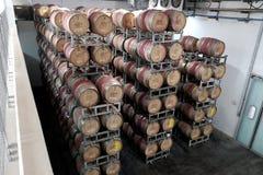 Cilindros do vinho no armazém Fotografia de Stock