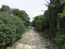 Ciliwung river in Bogor. Stock Photo