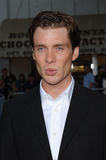 Cillian Murphy Royalty Free Stock Photography