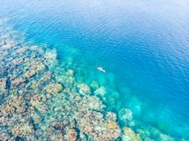Cima aerea giù la gente che si immerge sul mare caraibico tropicale della barriera corallina, acqua blu del turchese Isole Sumatr fotografia stock libera da diritti