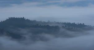 Cima arrivante a fiumi nebbiosa della montagna Immagine Stock