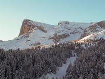 Cima de la montaña que brilla intensamente en el sol de la mañana Foto de archivo libre de regalías