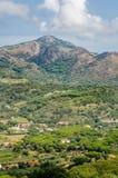 Cima Del Monte, Insel von Elba, Toskana lizenzfreies stockfoto