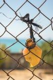 Cima della bottiglia rotta che pende da un recinto fotografie stock