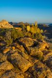 Cima della montagna del deserto del Mojave fotografie stock