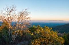 Cima della montagna di Hawskbill su Ridge Parkway blu al tramonto Immagine Stock