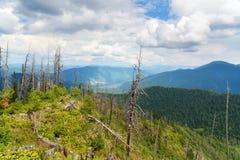 Cima della montagna e della vista di Kokuya sul lago Teletskoye Repubblica di Altai La Russia Immagine Stock Libera da Diritti