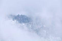 Cima della montagna in nebbia di inverno Immagini Stock