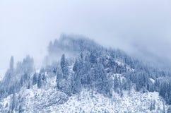 Cima della montagna nell'inverno coperto di nebbia Immagine Stock