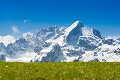 Cima della neve della montagna con il pascolo verde Immagine Stock Libera da Diritti