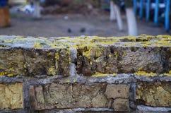 Cima della parete Fotografia Stock