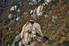 Cima delle colline al supporto Jiuhua, nove montagne gloriose Immagini Stock Libere da Diritti
