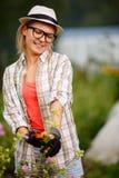 Cima di taglio della donna del giardiniere delle piante del fiore Fotografie Stock