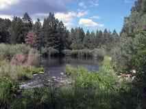 Cimarronrivier - New Mexico Stock Afbeeldingen