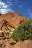 Cimbing la roca Fotografía de archivo