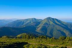 Cime della montagna coperte di erba verde, nella foschia blu Immagine Stock Libera da Diritti