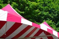 Cime della tenda Immagine Stock