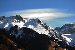 Cime delle montagne Immagine Stock