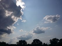 Cime soleggiate dell'albero del cielo immagini stock