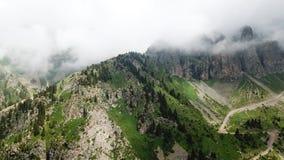 Cime verdi della montagna nelle nuvole C'è attillato, conifere, erba verde Fotografia Stock