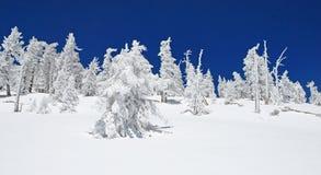 Cimeira congelada de San Jacinto Peak, Califórnia Imagens de Stock
