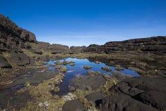 Cimeira da montagem Roraima, mundo estranho feito do st vulcânico do preto Fotos de Stock Royalty Free