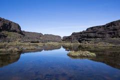 Cimeira da montagem Roraima, mundo estranho feito do st vulcânico do preto Imagens de Stock