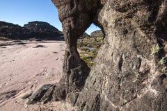 Cimeira da montagem Roraima, mundo estranho feito do st vulcânico do preto Imagem de Stock
