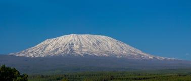 Cimeira da montanha de Kilimanjaro com neve em África imagens de stock