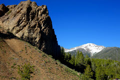 Cimeira do galeno, Idaho Fotografia de Stock Royalty Free