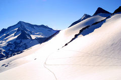 Cimeira GroÃvenediger - vista alpina Fotos de Stock