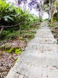 Ciment d'escaliers Image stock