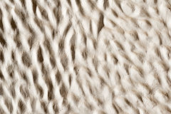 Ciment texture background. Cement for your design and texture background Stock Image