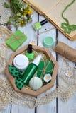 Cimente a composição da hortelã de produtos do threatment da beleza em cores verdes no fundo branco: sabão, óleo, creme, batom, v Imagens de Stock