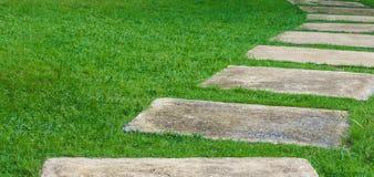 Cimente o pavimento no gramado verde com foco seletivo dianteiro Fotos de Stock Royalty Free