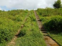 Cimentez l'escalier ou les étapes ou les escaliers et le chemin ou traînez vers le haut d'une pente d'herbe photographie stock
