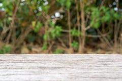 Cimentez le banc en bois comme la surface avec le fond d'arbre de tache floue images stock