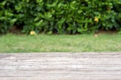 Cimentez le banc en bois comme la surface avec le fond d'usine de tache floue photographie stock libre de droits