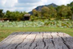 Cimentez le banc en bois comme la surface avec le fond de jardin de tache floue photos libres de droits