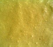 Cimento molhado Imagens de Stock