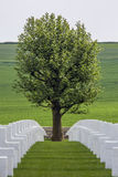 Cimetière américain de guerre - la Somme - France Photos stock