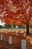 Cimetière d'Arlington Photos libres de droits