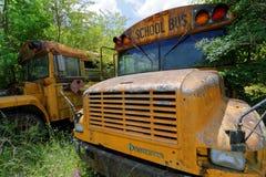 Cimetière d'autobus scolaire Image stock