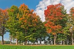 Cimetière d'automne image libre de droits