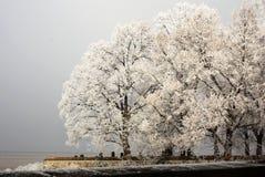Cimetière d'hiver Photographie stock libre de droits